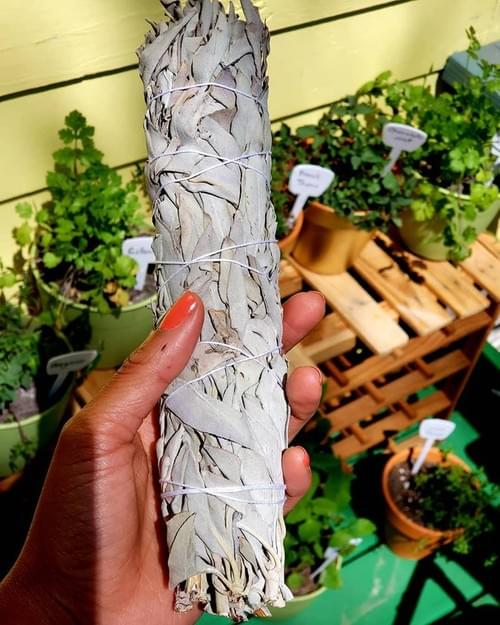 Large Bundle Sage