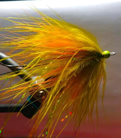 Marabou spey in fire tiger