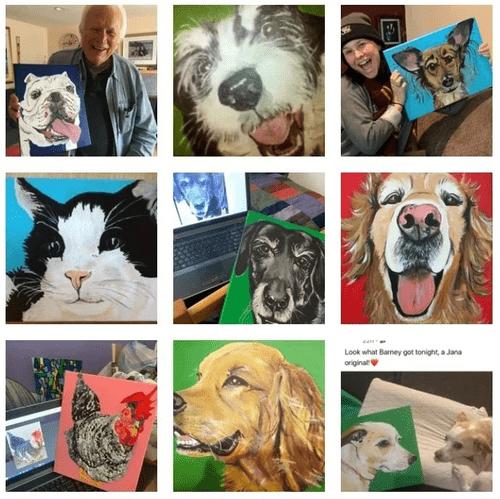Pet Portrait &  Pet Insight Package