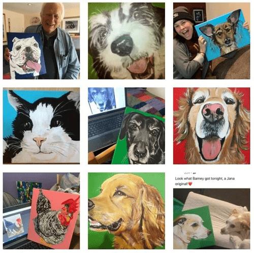 Pet Portrait & Animal Insight Package