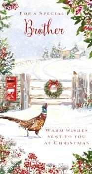 To a Special Brother (Pheasant) - Christmas