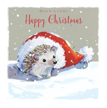 Hedgehog in a hat