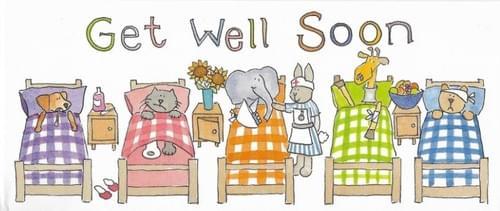 Get Well Soon - Animals