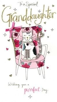 Cat in a chair - Granddaughter