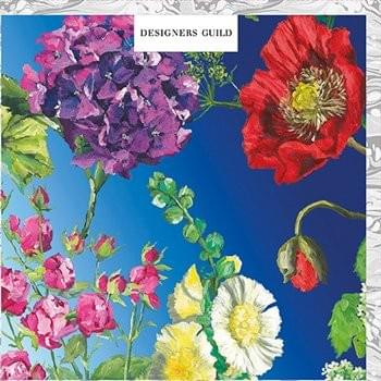 Flowers and Blue Sky / Fleurs et ciel bleu