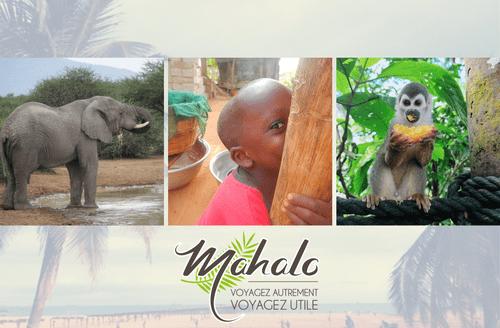 Mahalo, le volontariat humanitaire et écologique