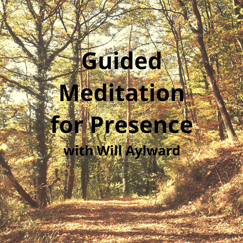 10-minute Guided Meditation for Presence (with Forest Sounds)