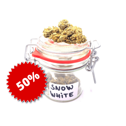 Snow White 6%