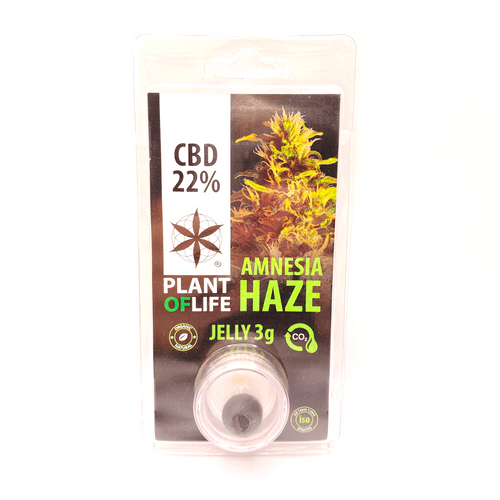 Plant of Life 3g Amnesia Haze