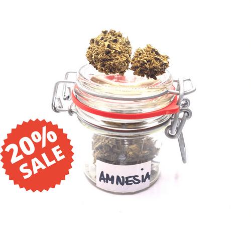 Amnesia 4%