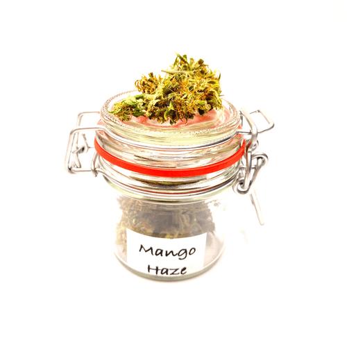 Mango Haze CBG 9%