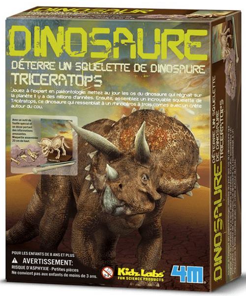 Triceratops à déterrer