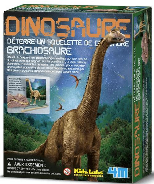 Brachiosaure à déterrer
