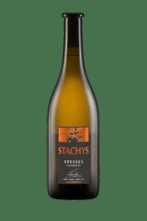 """Stachys"" Louis Fonjallaz, 2018"