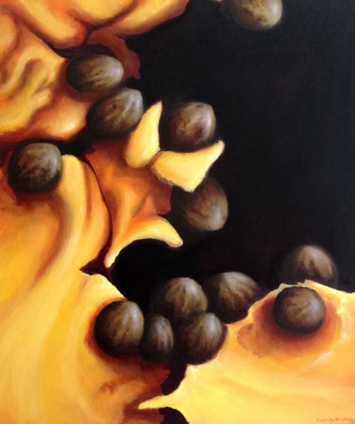 Papaya 4