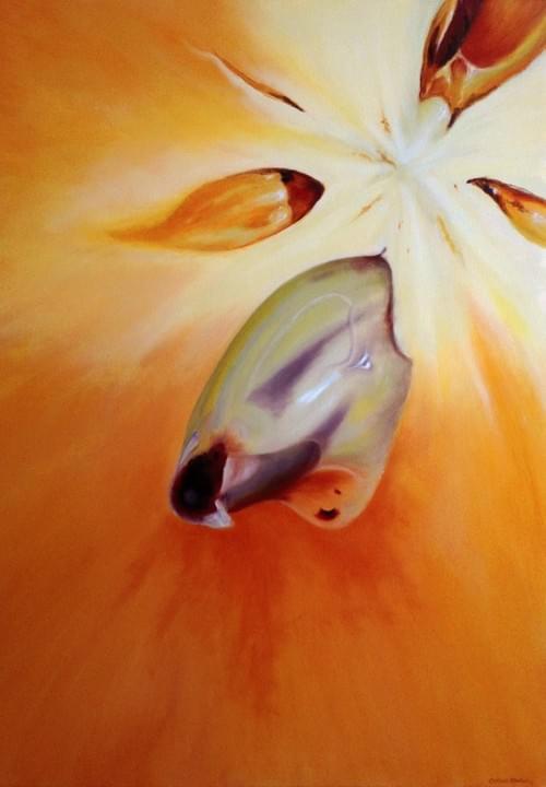 Starfruit 1