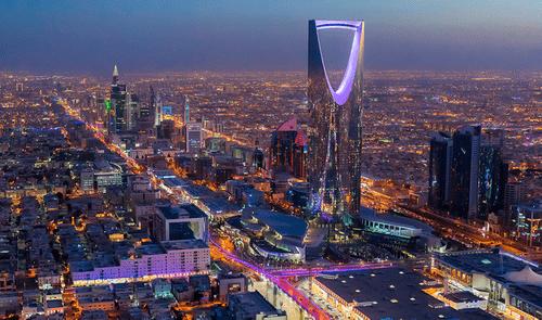 Option 10B | Saudi Arabia Compete Investor and Business Database 2020