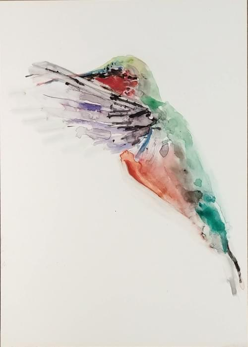 Ruby Throated with Blurred Wings