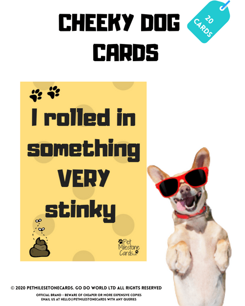 Naughty Dog Cards