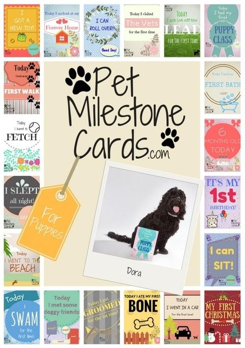 Puppy Milestone Cards