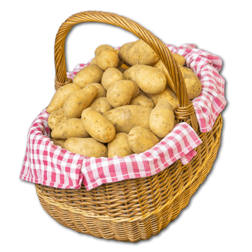 Annabelle - Pomme de terre à chair ferme - en sac