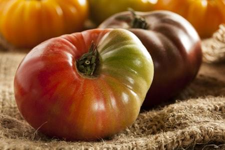 Tomates Marmandes au Kg