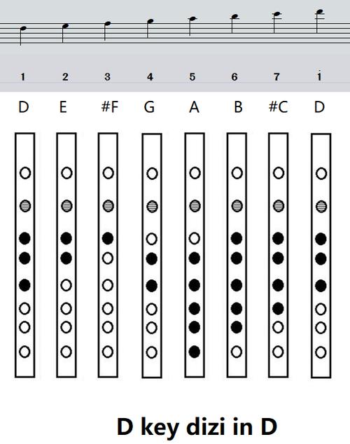D key dizi flute basic finger chart(D key dizi in D)