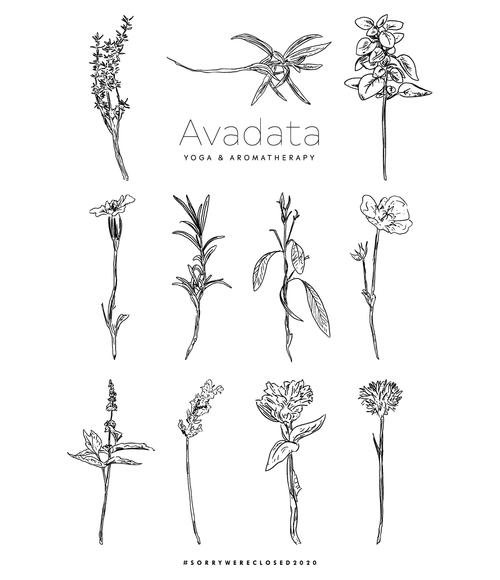 AVADATA Yoga & Aromatherapy - Fenwick, ON