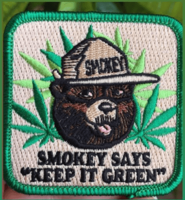 Keep it Green Embroidered Patch