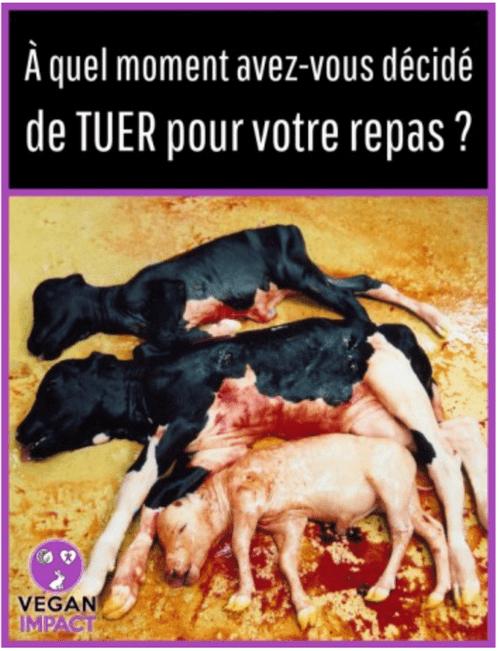 """Sticker """"Tuer pour votre repas"""""""