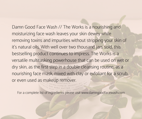 VALUE $25: Damn Good Face Wash — The Works