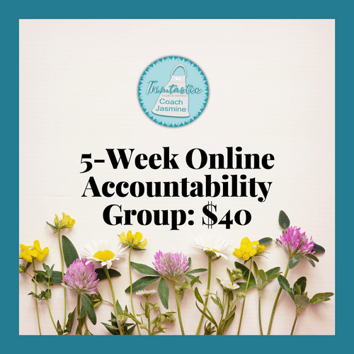 5-Week Accountability Group: $40
