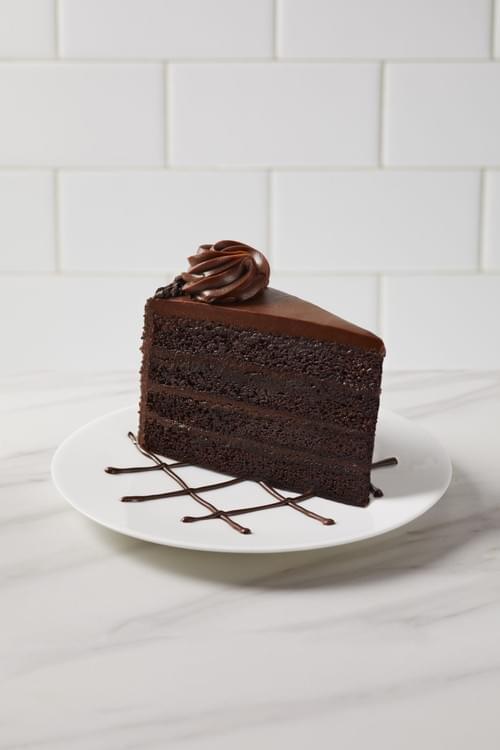 Fudge Cake Slice