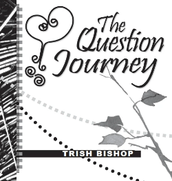 The Question Journey - eBook