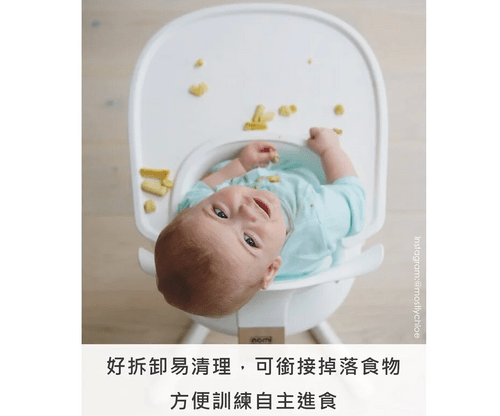 nomi 成長椅配件 - 餐盤