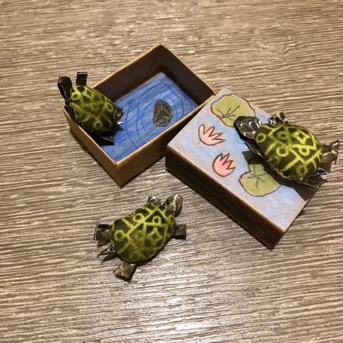 Tiny Turtles in a Matchbox