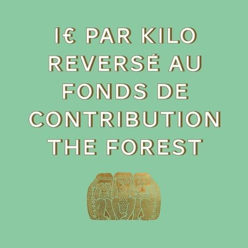 THE FOREST - 1KG ÉTHIOPIE
