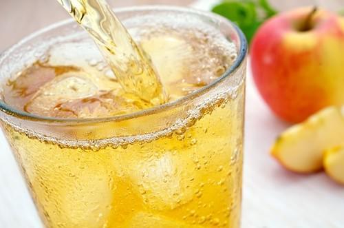 【Rinatura 瑞拉】蘋果醋 750ml (全素)