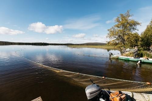 Nuottausta Jerisjärvellä.