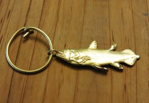 腔棘魚 -1 / Coelacanth-1