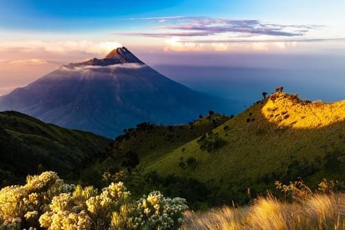 INDONESIA  /  Sumatra Organic Natural