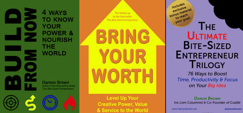 The SideHustle Bundle: Ultimate Bite-Sized Entrepreneur, Bring Your Worth & Build From Now(Preorder)