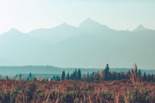 Tetons Haze