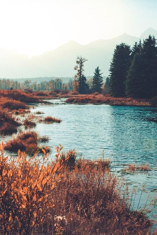 Tetons River