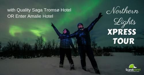 Northern Lights XPRESS TOUR - Quality Saga Hotel OR Enter Amalie Hotel