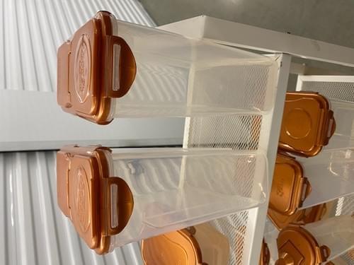 Lock N Lock Food Storage System