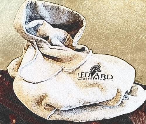 Ledyard Equestrian Hoodie