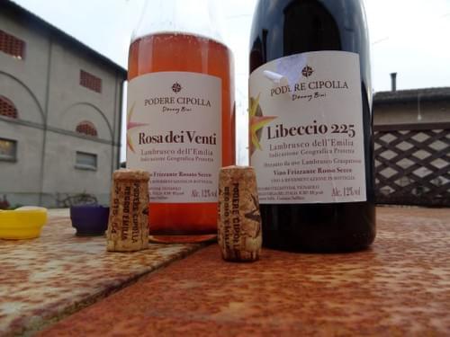 """Podere Cipolla """"Libeccio 225"""" #Lambrusco"""