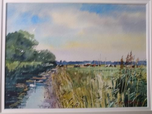 On Halvergate Marsh, Norfolk