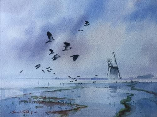 Lapwings over Halvergate Marsh